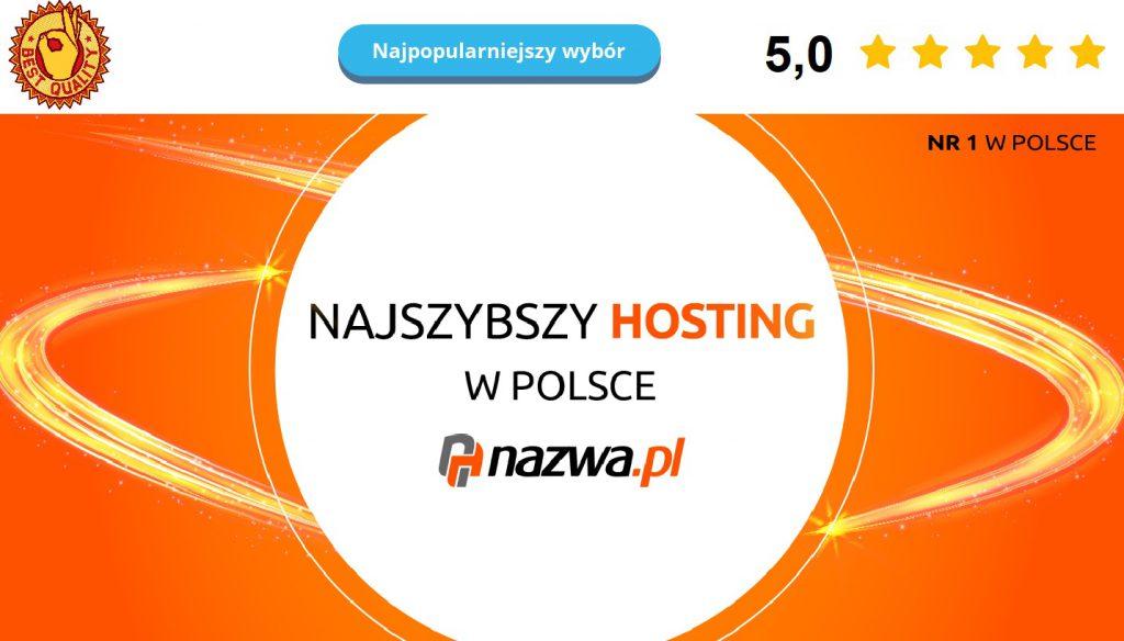 Ranking hostingów. Jaki hosting wybrać w 2021? 4